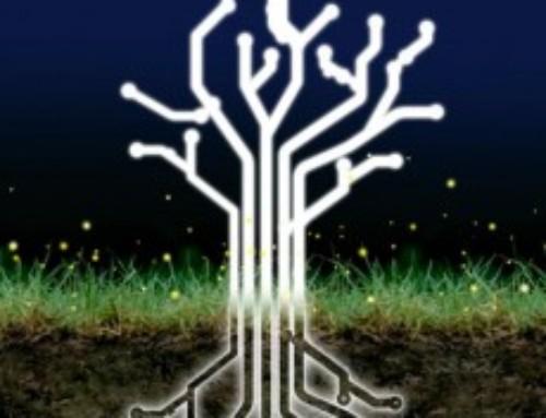 Italian Trees …